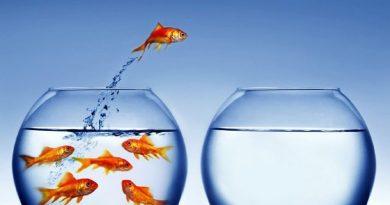 Como manter-se motivado(a) durante o processo de emagrecimento?